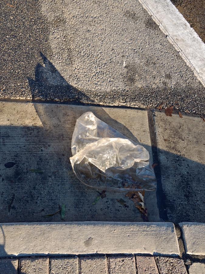 Plastic bag in gutter.