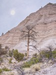 Cliffs, Tent Rock Park, NM