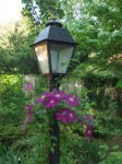 Lampost with flowers.