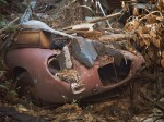 Old sportscar buried under detritus.