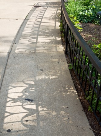 Shadows on pavement.