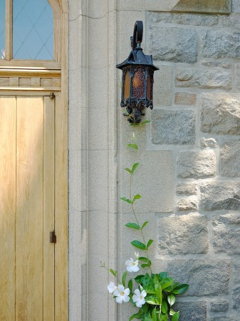 Flowering vine climbs to lamp.