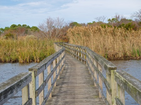Boardwalk at Currituck Lighthouse, Corolla, NC