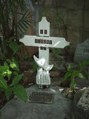 Kitten grave at Hemingway House, FL