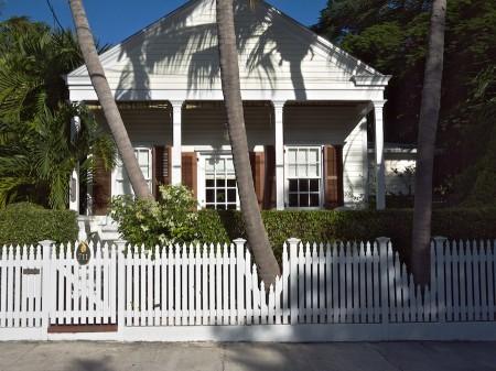 PIcket fences let palm trunks through.