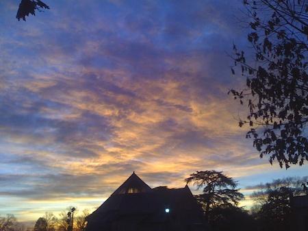 Lovely Dawn