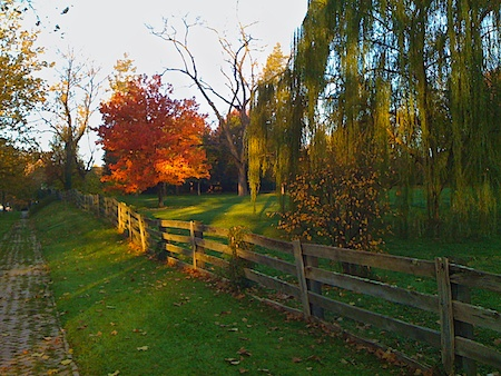 Brick path and park in early morning light.
