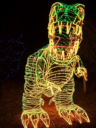 T-Rex at River of Lights, Albuquerque, NM
