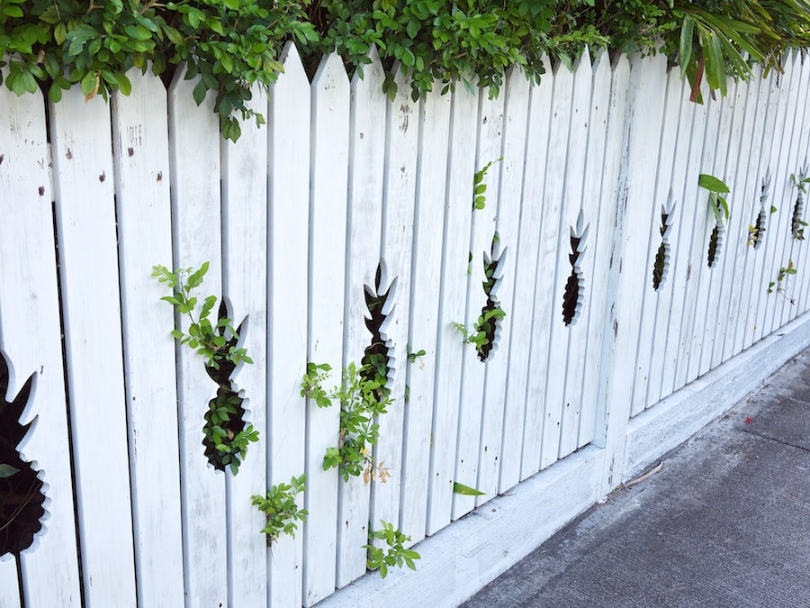 Picket fence with pineapple cut-outs.