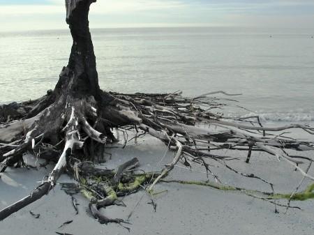 De Soto Beach, FL