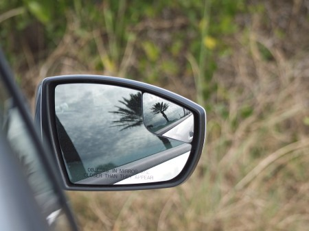 Palm tree reflection in side mirror.