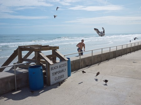 People and birds on the beach.