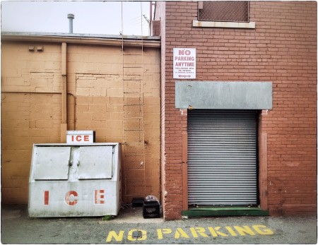 Alley view, ice storage and metal roll-up door.