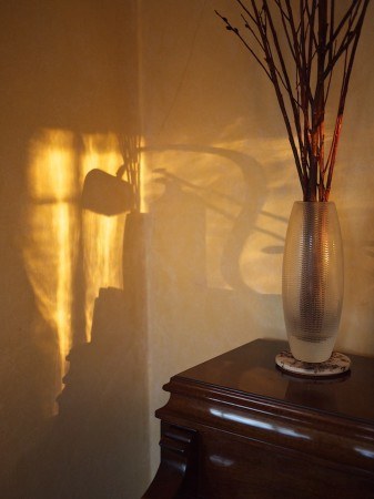Still life with shadows.