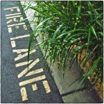 Fire Lane markings with green plants.