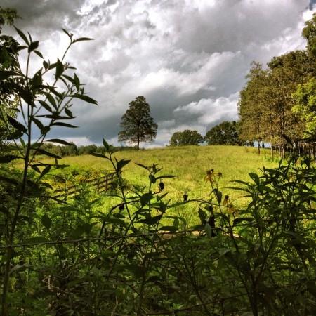 Rest stop landscape drama.