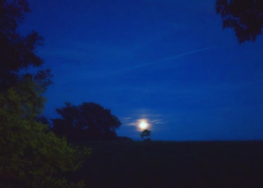 Moonrise, Biltmore Estate, Asheville, NC