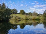Mirrored sky and landscape in pond.