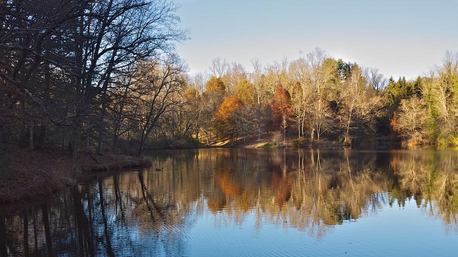 Bass Pond, Biltmore Estate, Asheville, NC