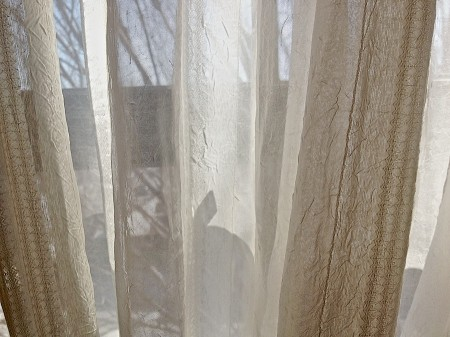 Gauzy drapes on window.
