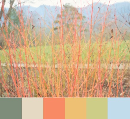 Image with color palette.