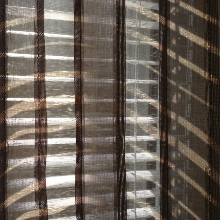 Light coming through curtain and blinds.