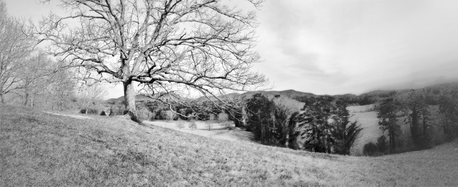 Panorama near the Inn at Biltmore Estate, Asheville, NC