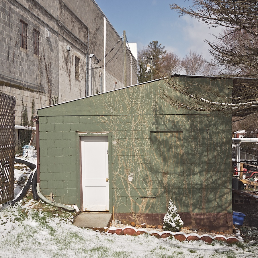 Green outbuilding with vine leaf residue.
