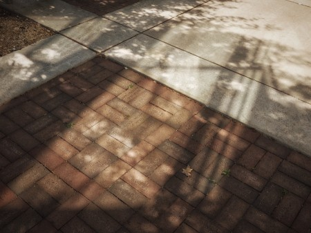 Named bricks, bounced light, and shadows.