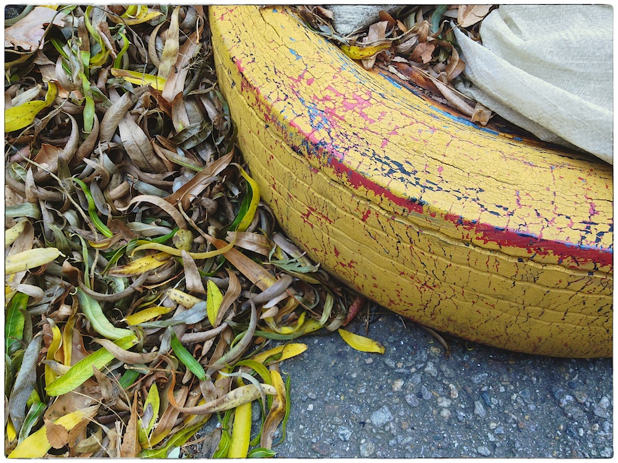 Painted barrier tire with fallen leaves.