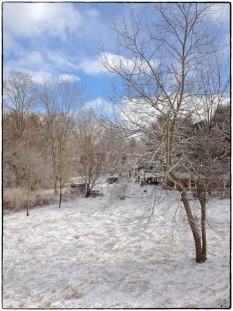 Sunny break in the blizzard.