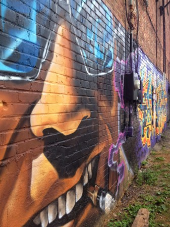 Alley graffiti-mural, Asheville, NC